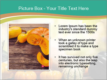 Assorted pumpkins and squashes on rustic wooden PowerPoint Templates - Slide 13