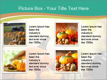 Assorted pumpkins and squashes on rustic wooden PowerPoint Template - Slide 14