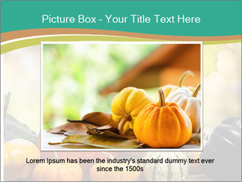 Assorted pumpkins and squashes on rustic wooden PowerPoint Templates - Slide 15
