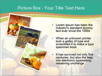 Assorted pumpkins and squashes on rustic wooden PowerPoint Template - Slide 17