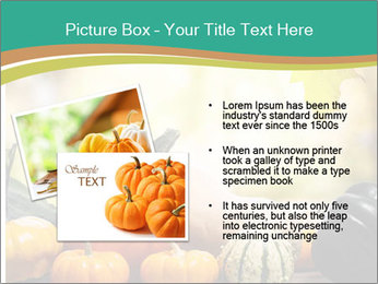 Assorted pumpkins and squashes on rustic wooden PowerPoint Template - Slide 20
