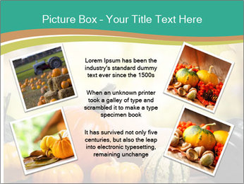 Assorted pumpkins and squashes on rustic wooden PowerPoint Template - Slide 24