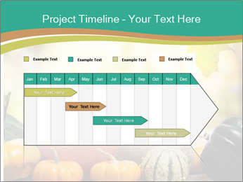 Assorted pumpkins and squashes on rustic wooden PowerPoint Templates - Slide 25