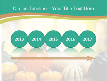 Assorted pumpkins and squashes on rustic wooden PowerPoint Templates - Slide 29