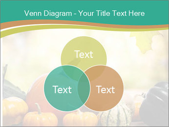 Assorted pumpkins and squashes on rustic wooden PowerPoint Templates - Slide 33