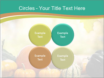 Assorted pumpkins and squashes on rustic wooden PowerPoint Templates - Slide 38
