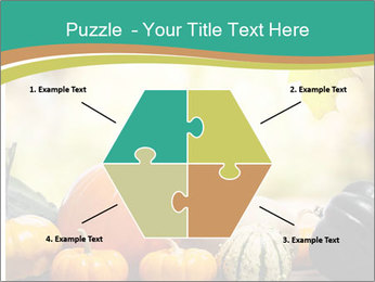 Assorted pumpkins and squashes on rustic wooden PowerPoint Templates - Slide 40