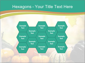 Assorted pumpkins and squashes on rustic wooden PowerPoint Template - Slide 44