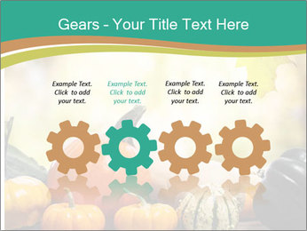 Assorted pumpkins and squashes on rustic wooden PowerPoint Template - Slide 48