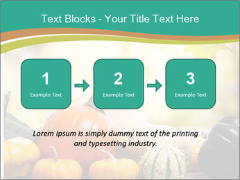 Assorted pumpkins and squashes on rustic wooden PowerPoint Template - Slide 71