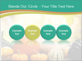 Assorted pumpkins and squashes on rustic wooden PowerPoint Templates - Slide 76