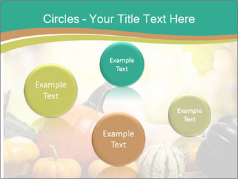 Assorted pumpkins and squashes on rustic wooden PowerPoint Templates - Slide 77
