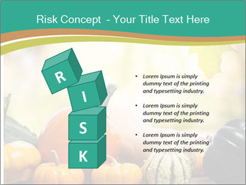 Assorted pumpkins and squashes on rustic wooden PowerPoint Template - Slide 81