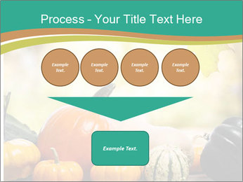 Assorted pumpkins and squashes on rustic wooden PowerPoint Template - Slide 93