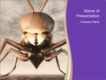 Illustration of a Wasp PowerPoint Template - Slide 1
