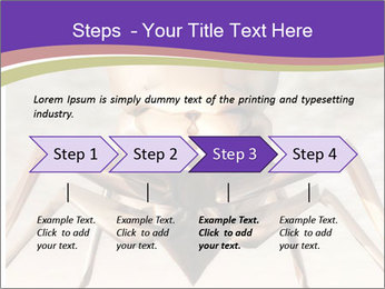 Illustration of a Wasp PowerPoint Template - Slide 4