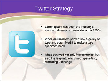 Illustration of a Wasp PowerPoint Template - Slide 9