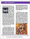 0000088247 Word Template - Page 3