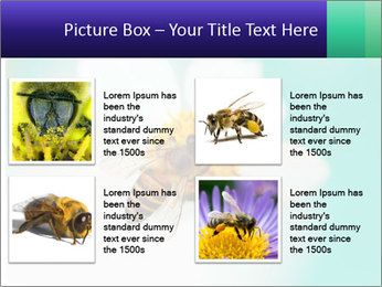 Bee on flower PowerPoint Template - Slide 14