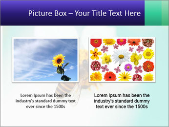 Bee on flower PowerPoint Template - Slide 18