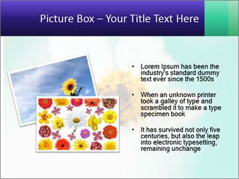 Bee on flower PowerPoint Template - Slide 20