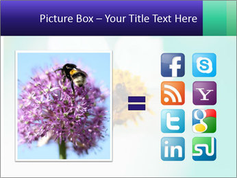 Bee on flower PowerPoint Template - Slide 21