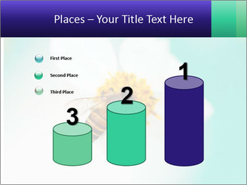 Bee on flower PowerPoint Template - Slide 65