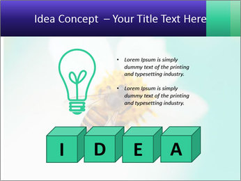 Bee on flower PowerPoint Template - Slide 80