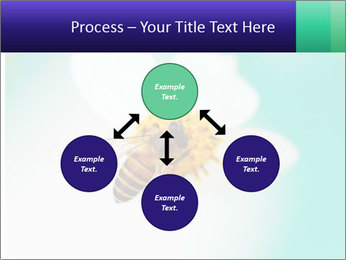 Bee on flower PowerPoint Template - Slide 91