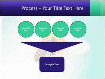 Bee on flower PowerPoint Template - Slide 93