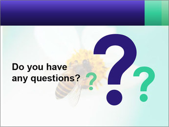 Bee on flower PowerPoint Template - Slide 96