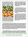 0000088259 Word Template - Page 4