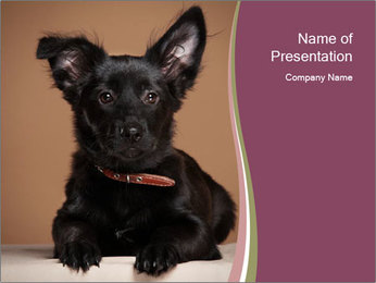 Dog PowerPoint Template - Slide 1