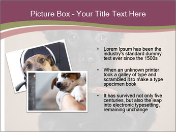Dog PowerPoint Template - Slide 20
