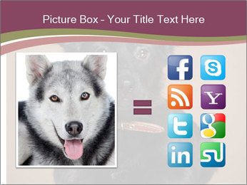 Dog PowerPoint Template - Slide 21
