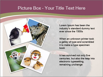 Dog PowerPoint Template - Slide 23