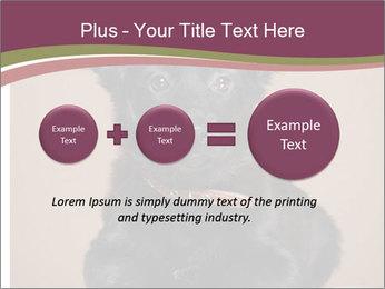 Dog PowerPoint Templates - Slide 75
