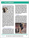 0000088262 Word Template - Page 3