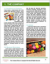 0000088266 Word Templates - Page 3
