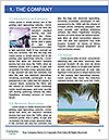 0000088267 Word Template - Page 3