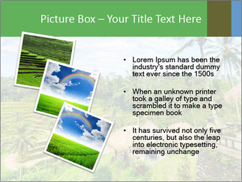 Bali Island PowerPoint Template - Slide 17
