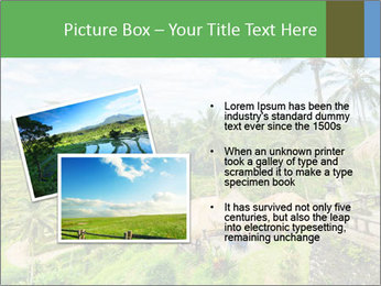 Bali Island PowerPoint Template - Slide 20