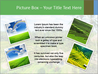 Bali Island PowerPoint Template - Slide 24
