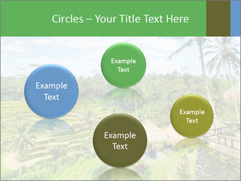 Bali Island PowerPoint Template - Slide 77