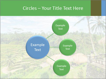 Bali Island PowerPoint Template - Slide 79