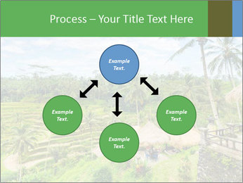 Bali Island PowerPoint Template - Slide 91