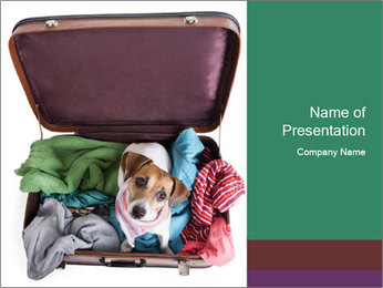 Cute dog sits in a suitcase for traveling with brightly PowerPoint Templates - Slide 1