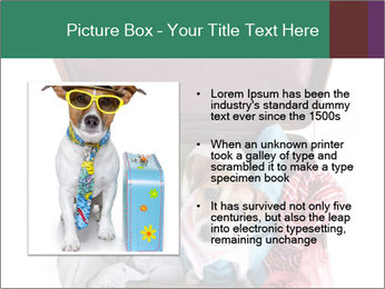 Cute dog sits in a suitcase for traveling with brightly PowerPoint Templates - Slide 13