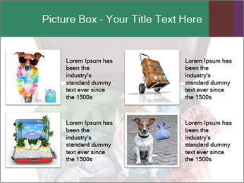 Cute dog sits in a suitcase for traveling with brightly PowerPoint Templates - Slide 14