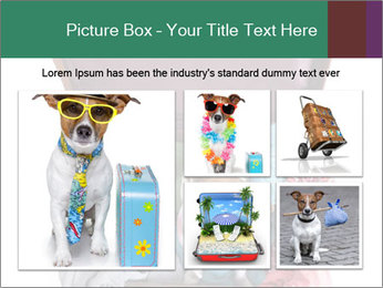 Cute dog sits in a suitcase for traveling with brightly PowerPoint Templates - Slide 19